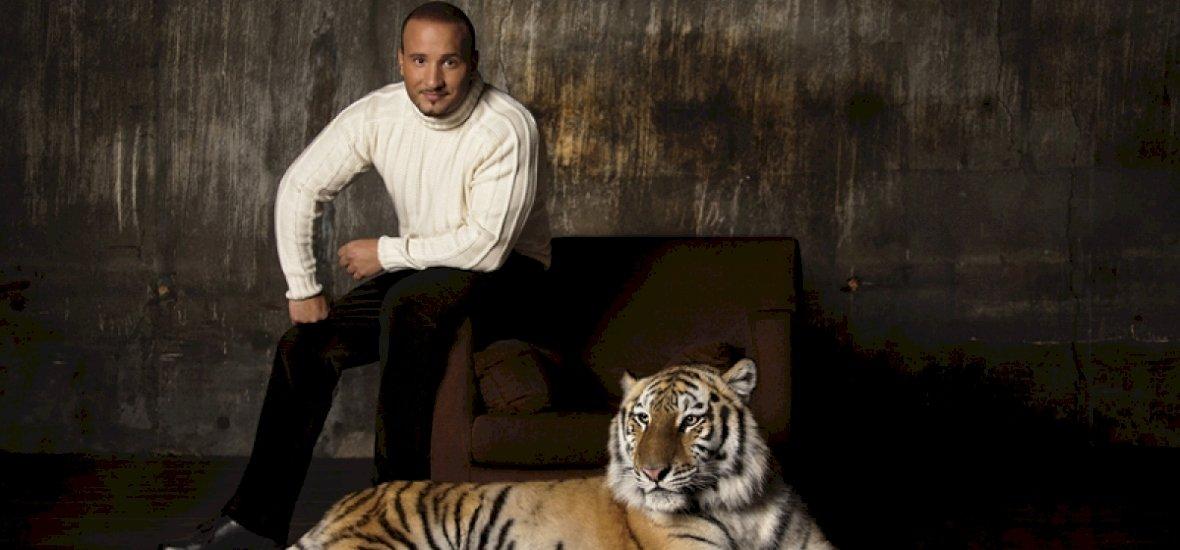 Agyvérzés vagy ájulás? Cirkuszi előadás közben lett rosszul a tigris