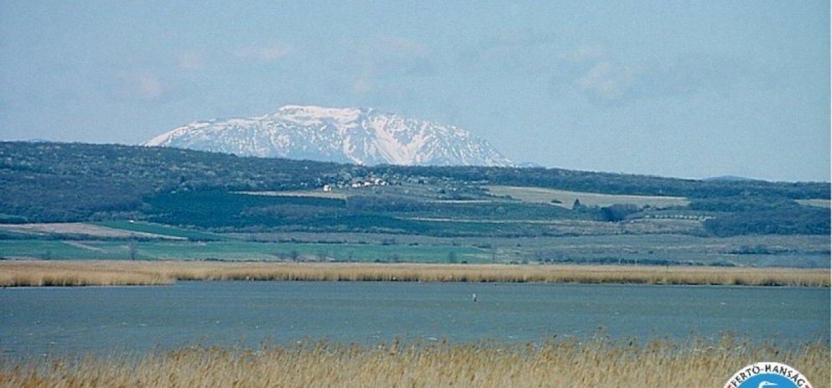 Vadak, halak, édes borok, Alpok: látványos gasztrotúra a Fertő-tó körül
