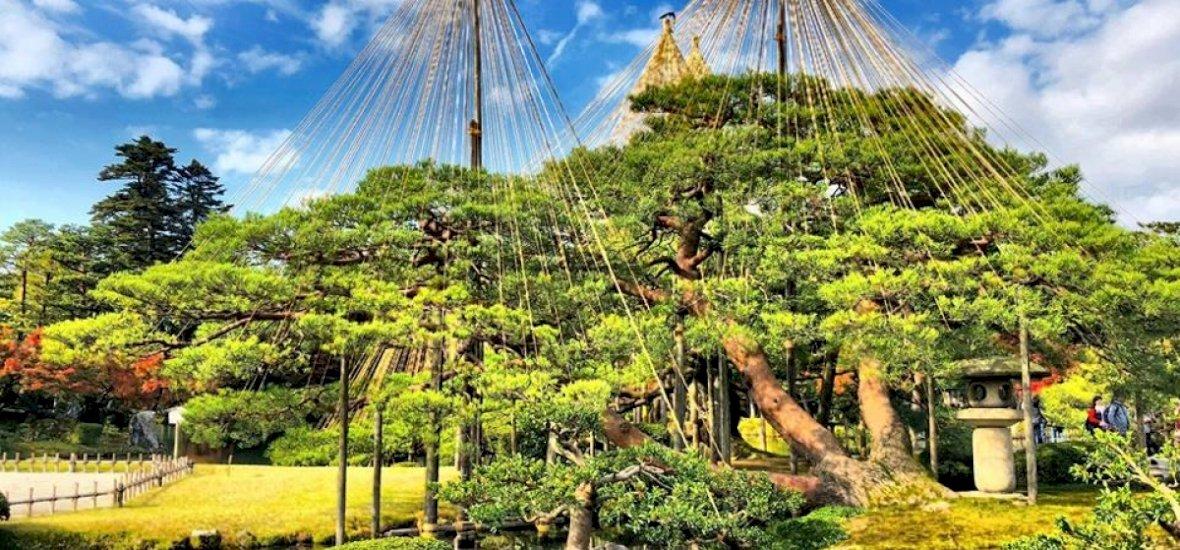 Zsolt utazása: Japán egyik leghíresebb kertje és a szamurájok