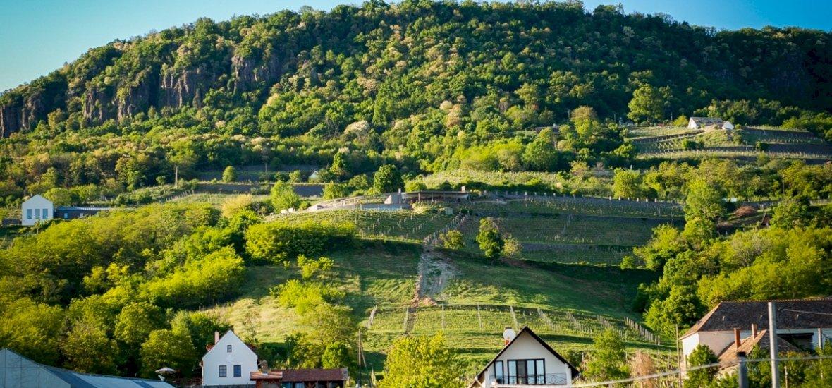 Halak a hegyen: itt a Gasztrohegy-hétvégék újabb felvonása