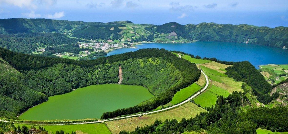 Visszaadhatunk valamit az Azori-szigeteknek, ha ültetünk egy fát