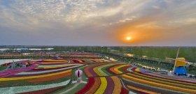 """20 millió tulipán egy helyen: Kína lehajrázta """"Európa kertjét"""""""