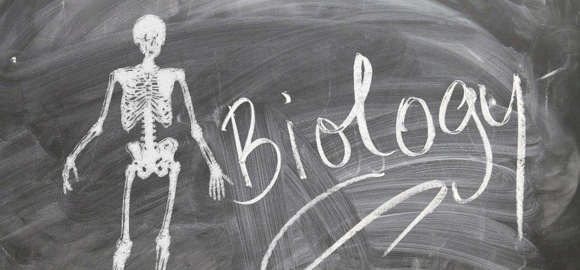 """""""Valami új zajlik a biológiában, olyan, amit még soha nem tapasztaltunk"""""""
