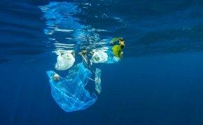 Attenborough hatására milliók válnak meg a műanyagtól