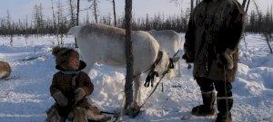 A fehér szarvas: világhírű természetfilmesünk új filmjének trailere