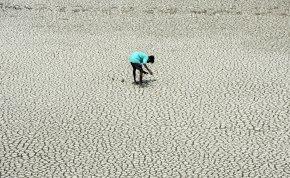 Vízhiány: százmilliókon segíthet a magyar találmány