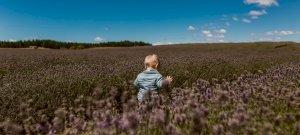Új-Zéland gyermekszegénységgel és mentális betegségekkel küzd