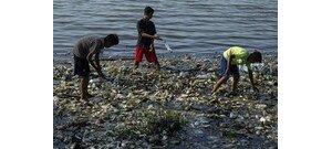 Mondj nemet a műanyagra, keress és használj más alternatívát!