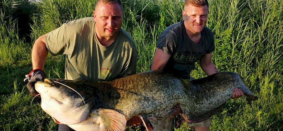Vacsora úr és társa egy kis tóban fogott halóriást