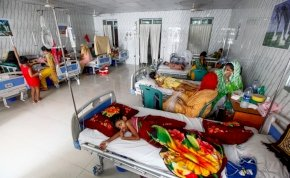 Globális vészhelyzet jöhet: terjed a gyógyszernek ellenálló malária