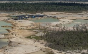 Luxemburgnyi területű erdőt vágtak ki csak júliusban az Amazonasban