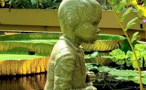 Kultikus helyen avatták fel Nemecsek Ernő szobrát