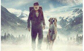 Harrison Ford és a CGI kutya nyert a hazai mozikban