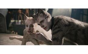 A Macskák lett a legrosszabb film az Arany Málnán