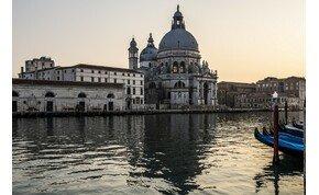 Visszatértek a delfinek Olaszországba, Majka kiakadt az arcmaszk árán