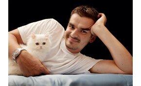 Aki cicát tart, sokkal egészségesebb: jót tesz a szívednek, megnyugtat, jobban fogsz aludni, és még...