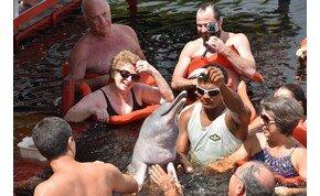 """Az amazonasi pirulós delfin és az indián """"tábor"""" – galéria"""