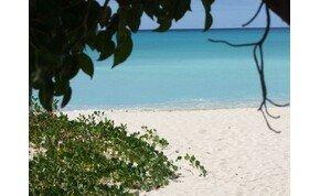 Hiába nyűgöz le Barbados szépsége, ha nem vigyázol, akkor jól megjárod! – galéria