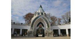 Szinte teljesen újranyitott a fővárosi állatkert, már csak a Holnemvolt Várra kell várni