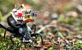 Itt az első bogárra szerelhető kamera: így figyelnek majd meg minket a jövőben?