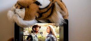 Végleg bezár a Tigrisvilág-sorozatban elhíresült állatkert
