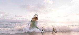 A cápák előre megérzik a hurrikánokat, és azonnal cselekednek