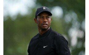 Vigyázz Tiger Woods! Egy 4 éves fiú egy ütésből a lyukba talált!