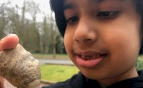 488 millió éves kövületet talált a kertben ez a kisfiú
