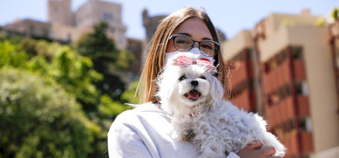 Szenzációs: a kutyák 97 százalékos pontossággal képesek kiszagolni a koronavírust