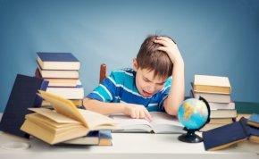Kvíz: 10 általános iskolás földrajzi kérdés – milyen alakú a Föld? Figyelem, becsapósak a válaszlehetőségek!