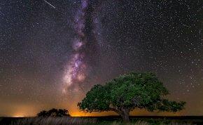 Napi horoszkóp: egy pillanat tönkretehet mindent!