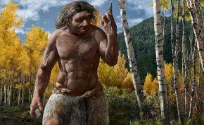 A szenzációs felfedezés alapjaiban írhatja át az emberi evolúció történetét!