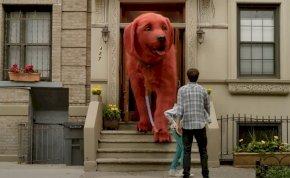 Egy óriás piros kutya miatt robbant fel az internet, mert emberek milliói imádják - videó