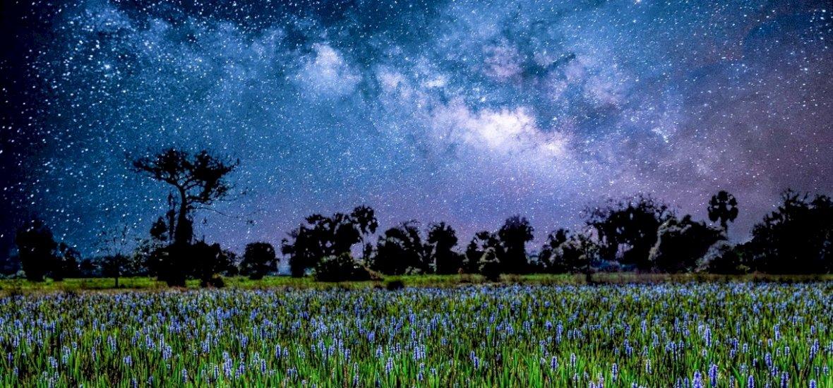 Napi horoszkóp: konfliktusok, vagy felhőtlen nyugalom vár rád?