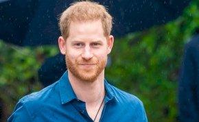 Harrynek leáldozott - Garantáltan ő a legszexibb a királyi családban!