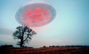 Kvíz: minek a rövidítése a WC, az UFO vagy éppen az FBI? 10 betűszó, amelynek a legtöbben rosszul tudják a pontos jelentését