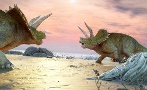 A világ legnagyobb triceratops csontváza kerül kalapács alá - videó