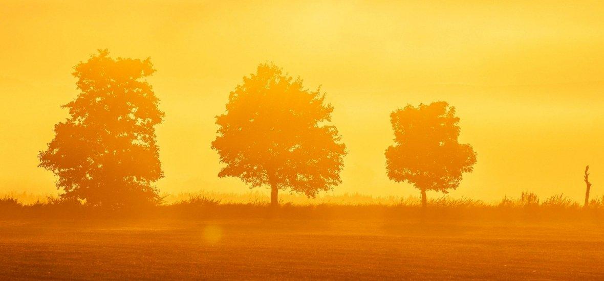 Időjárás: nagy fordulat előtt állunk, visszatér a napsütés - méghozzá ezen a napon! Részletes időjárás-jelentés