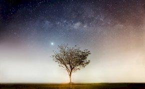Napi horoszkóp: ne hagyd, hogy bárki is megbontsa a lendületedet