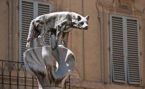 Kvíz: kitalálod a latin nevéből az állatok magyar neveit? Olyan tudásra tehetsz szert, amellyel bárkit lenyűgözhetsz