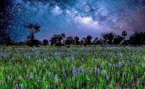 Napi horoszkóp: vajon hallgathatsz az ösztöneidre a hét utolsó napján?