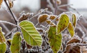 Időjárás: a keleti tájakon télies hideg lesz hajnalban