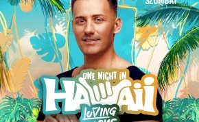 Loving Arms One Night in Hawaii - TABU Debrecen