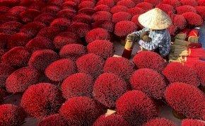 Csoda Vietnámban! Tippelj, mit látsz a képen, és a galériánkból kiderül, hogy igazad volt-e