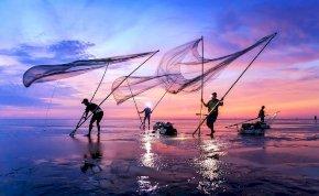 A világ legcsodálatosabb munkája a halászat? Nem hiszed? Akkor nézd meg ezt!