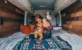 Feladta a menő állását egy nő, hogy két kutyájával beutazhassa Amerikát egy kisteherautóval