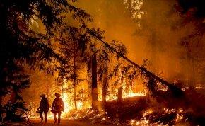 Tombolnak a lángok Kaliforniában – Meghökkentő képeken a bátor tűzoltók harca!