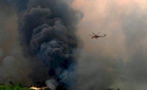Fotókon a pusztító görögországi erdőtűz