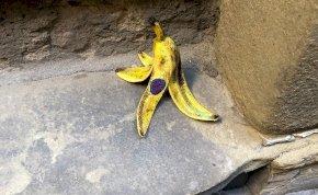 """Valami nem stimmel ezzel a """"banánnal"""", igaz? – Az egész internetet ámulatba ejtették egy lengyel művész alkotásai!"""