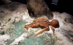 Ma 30 éve találták meg Ötzit, a jégbefagyott ősembert – képek